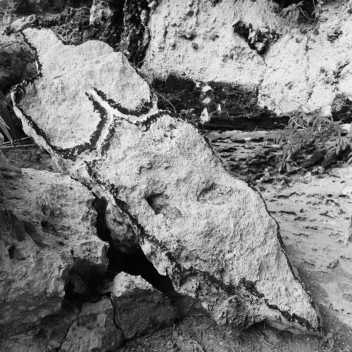 Ana Mendieta - La tierra habla (The Earth Speaks)